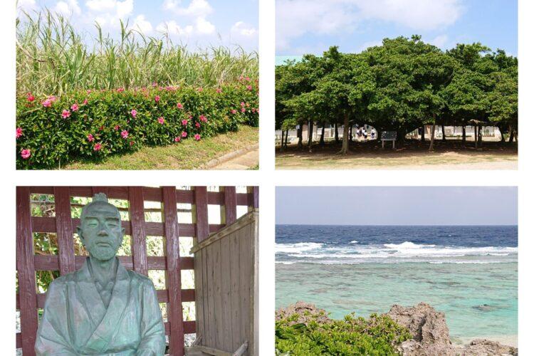 沖永良部島へのマイクロツーリズムを楽しみました!  !(^^)!
